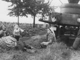 Das Foto aus dem Jahr 1959 zeigt die familiären Erntehelfer bei einer Pause im Weinberg. Der dreijährige Heinfried, heutiger Seniorchef, sticht beim Trinken aus der Weinflasche heraus.